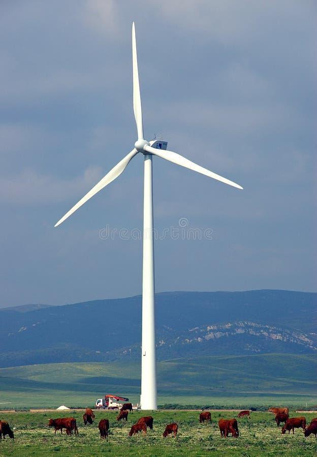 Download Wind Turbine stock photo. Image of power, windmill, technology - 110900