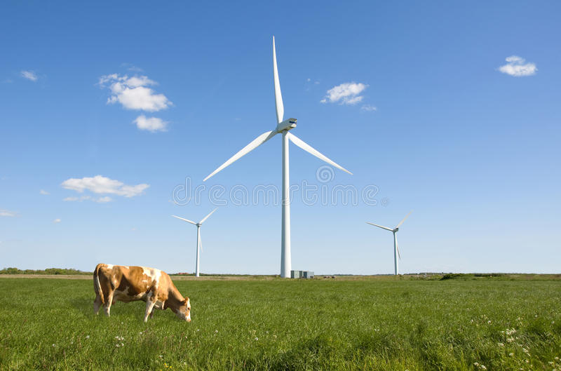 Wind turbine clean green energy royalty free stock image