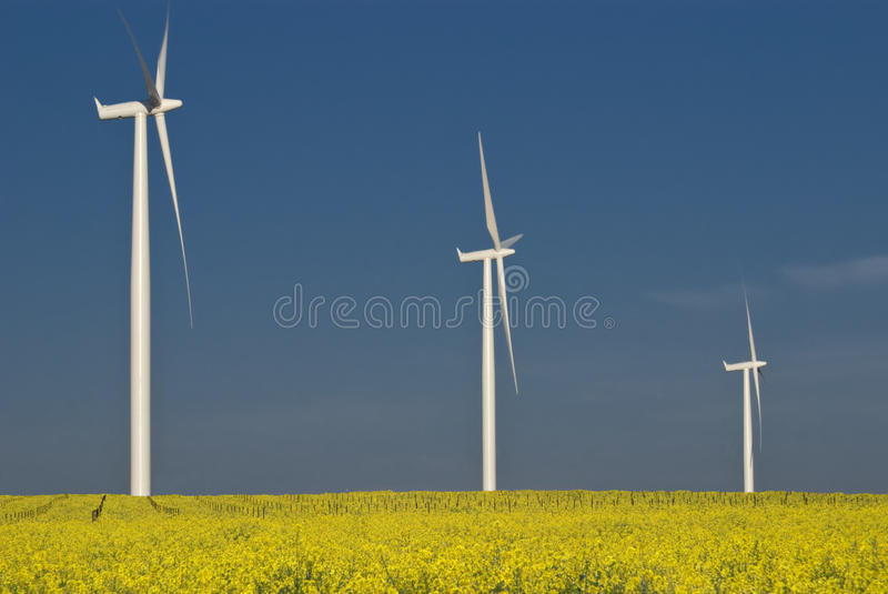 Wind turbine field stock images