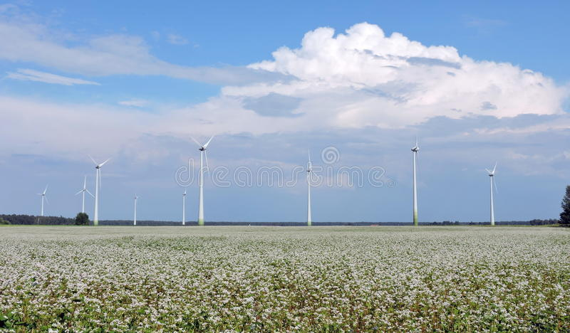 Wind turbine in field, Lithuania stock photography