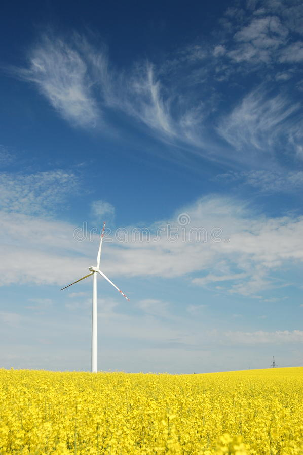 Free Wind Turbine On Field Of Oilseed Royalty Free Stock Image - 14439356
