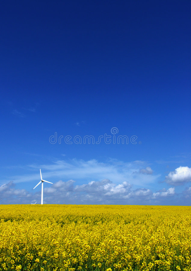 Wind turbine on field stock photo