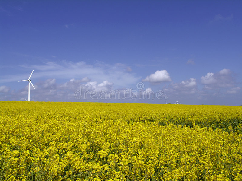 Wind turbine on field stock images
