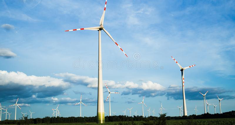 Wind turbines in the field with sky in background. Clean energy. royalty free stock image