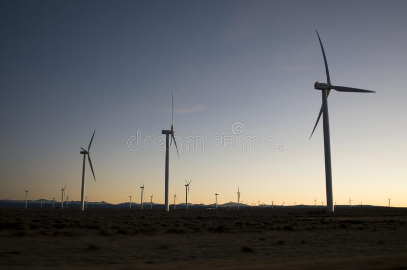 Wind turbines in field at sunset stock images