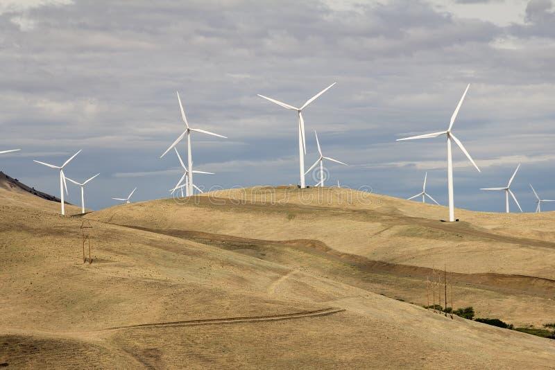Wind Turbines in Goldendale Washington Landscape. Wind Turbines Energy Farm in Windy Point Goldendale Washington Landscape Terrain stock photo