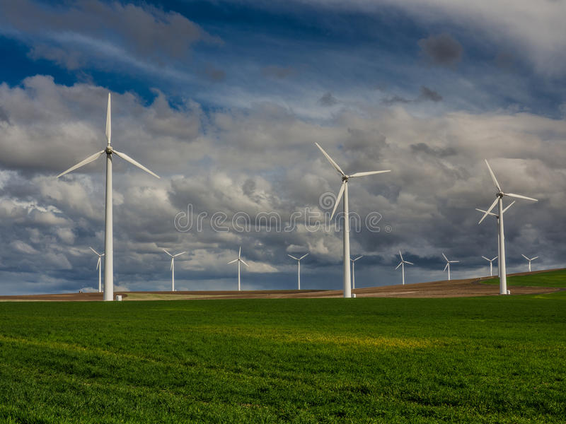 Wind turbines and a grassy field stock photo