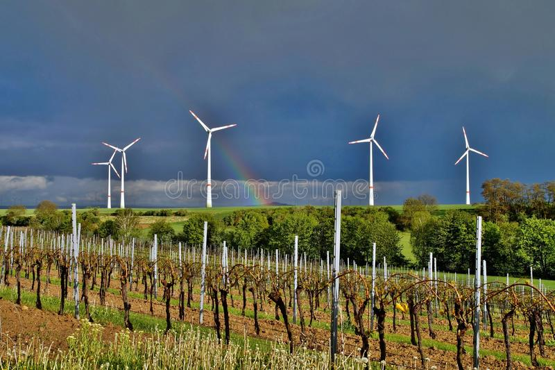 Wind turbines in green vineyard landscape against blue sky and rainbow after the rain stock images