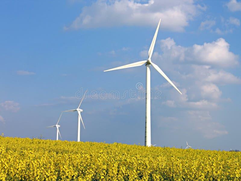 Wind turbines in rapes field. Environmental friendly alternative energy by wind turbines in rapes field royalty free stock photo
