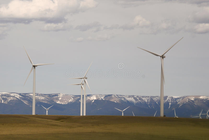 Wind Turbines of a Renewable Energy Wind Farm. Multiple wind turbines in a wind farm in rural Montana with grassland in the foreground, mountains in the royalty free stock images