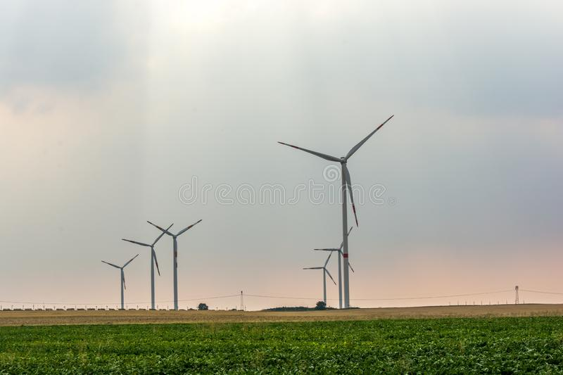Wind farm on a field in the evening sun stock photo