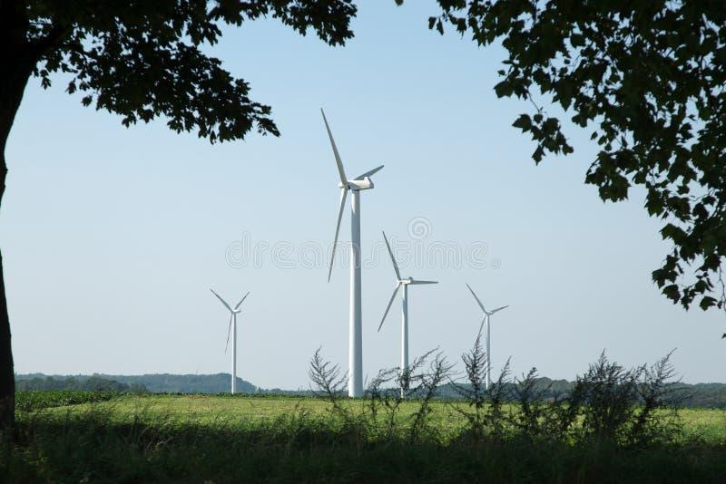 Wind turbines seen through trees stock photo