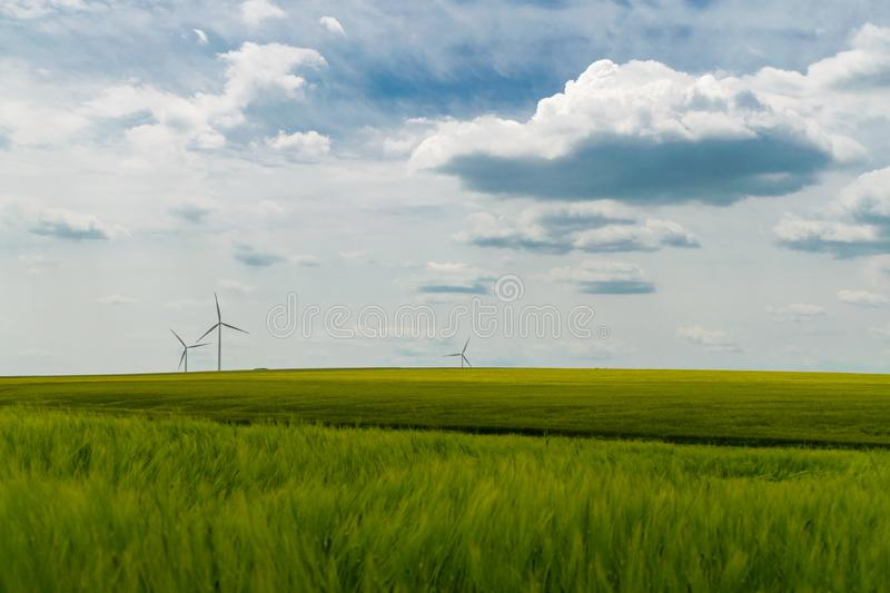 Wind turbines situated in a green wheat field royalty free stock photo