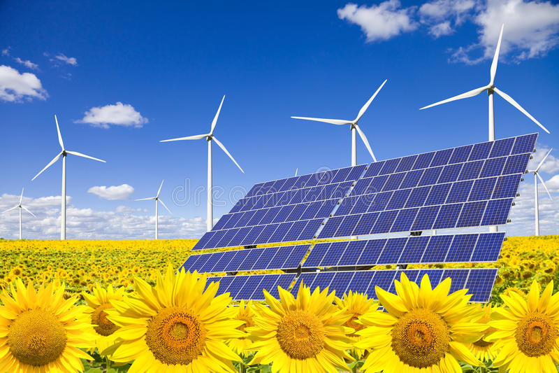 Download Wind Turbines And Solar Panels On Sunflowers Field Stock Image - Image: 11624151