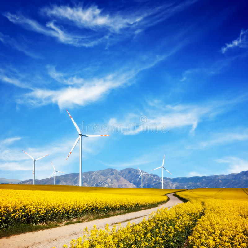 Wind turbines on spring field. Alternative, clean energy. Wind turbines on spring field. Alternative, clean and natural source of energy is gaining pupularity royalty free stock image