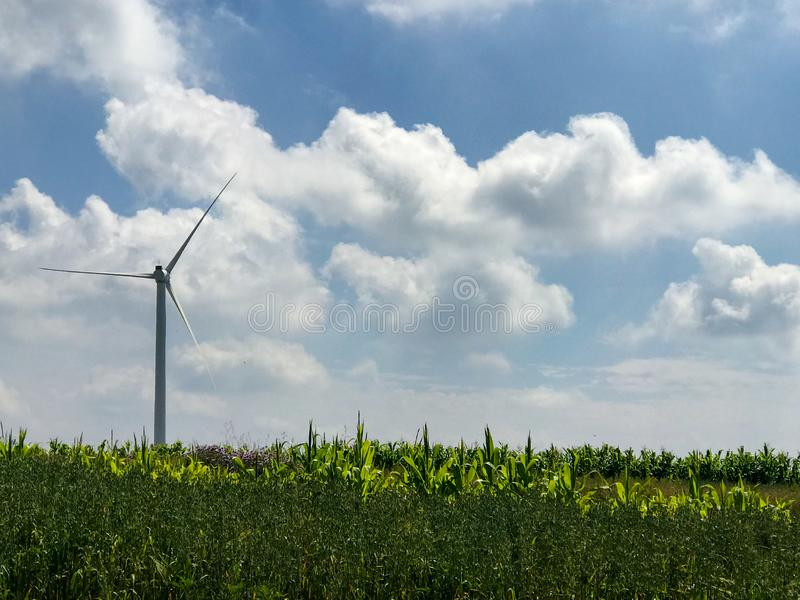 Wind turbines under blue sky and white clouds stock image