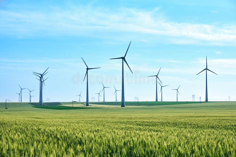 Wind turbines and vivid colors of green wheat field in the Spring on a blue sky, late afternoon. Concept for green energy. Wind turbines and vivid colors of stock photos