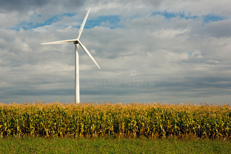 Wind wheel. On blue sky with cornfield royalty free stock image