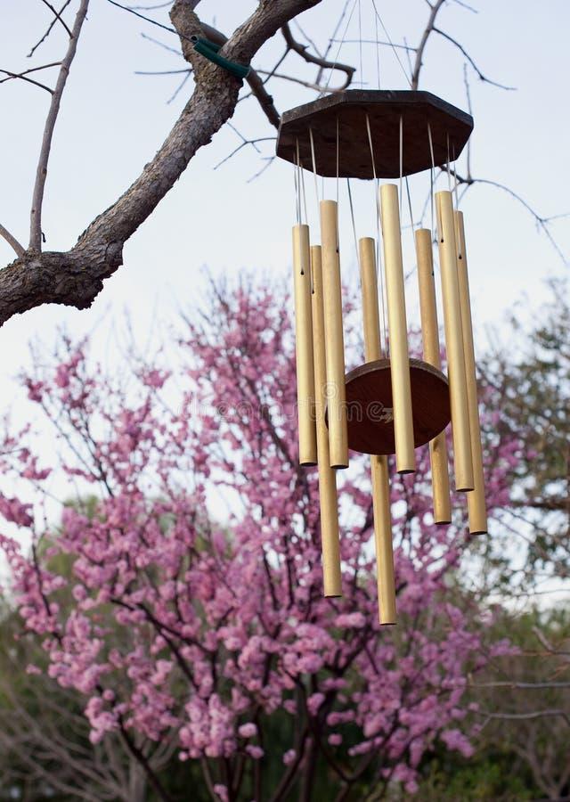 Windchime dourado de encontro às flores de cereja cor-de-rosa imagens de stock royalty free