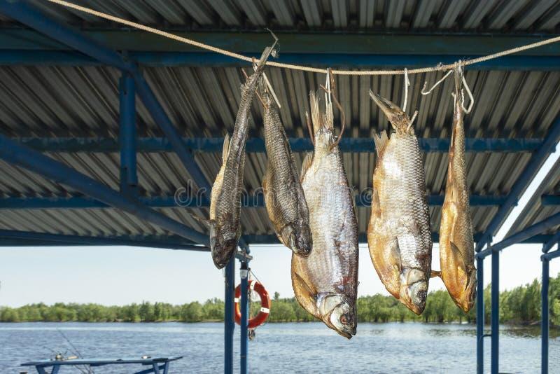 Winde I van rivier droogt grote vissen in de schaduw op de kabel royalty-vrije stock foto