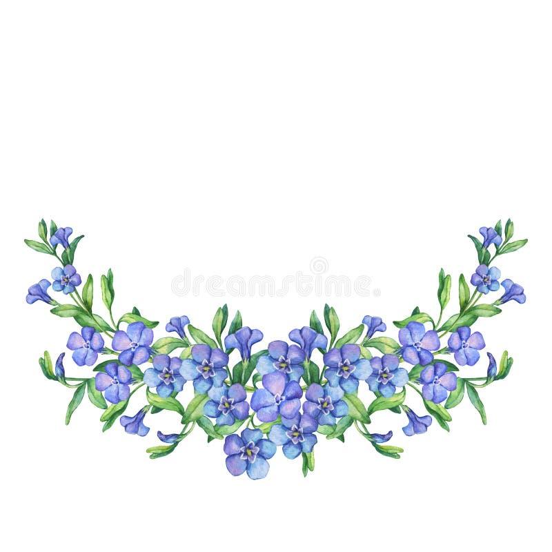 Winden Sie mit ersten Frühlingsblumen - VÃnca-mÃnor lizenzfreie abbildung