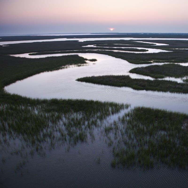 Windend water in moeras. royalty-vrije stock fotografie