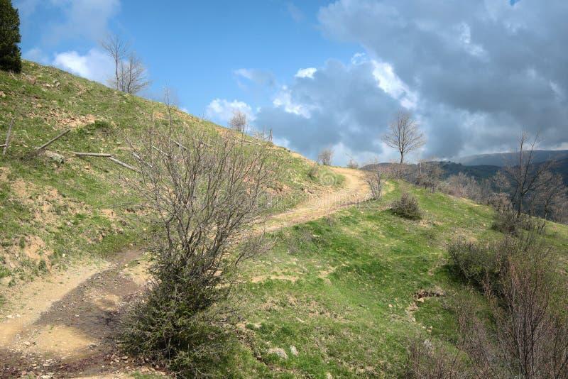 Windende landweg onder blauwe hemel met regenwolken stock afbeelding