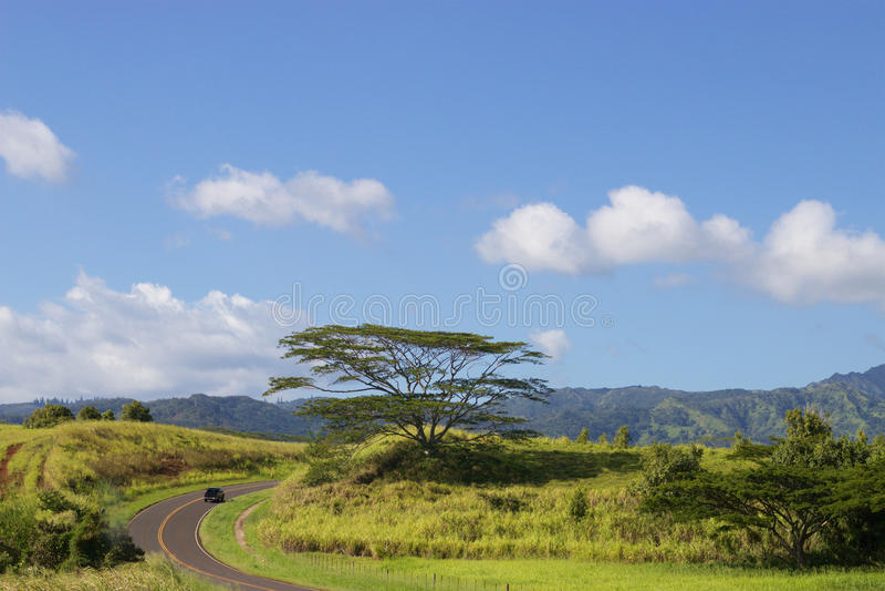 Windende straat Kauai stock foto's