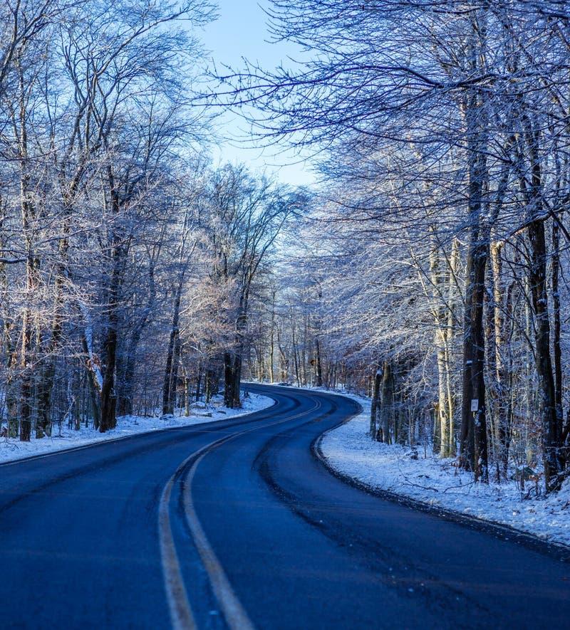 Windende weg in de winter royalty-vrije stock foto