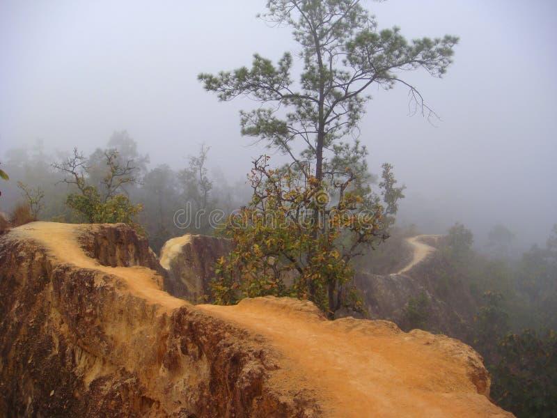 Windende weg door mist stock afbeeldingen