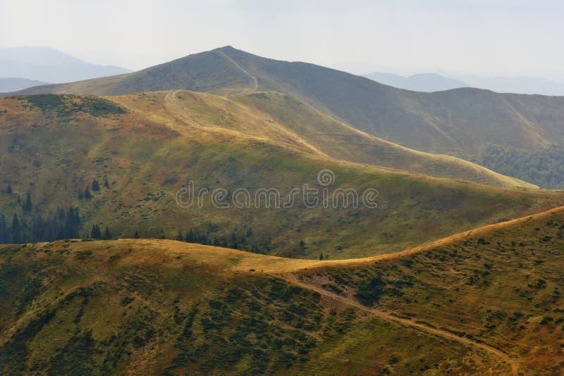 Windende weg in een bergvallei stock fotografie