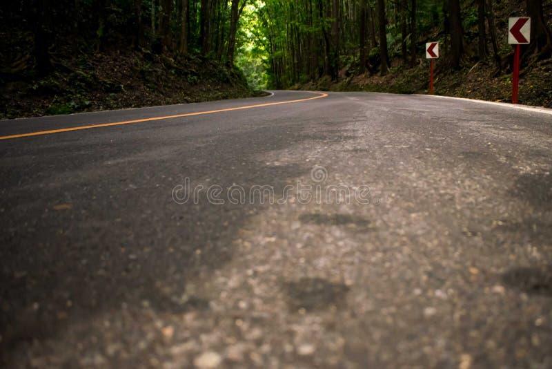 Windende weg met het geel op het centrum, gebogen weg aan het bos stock foto