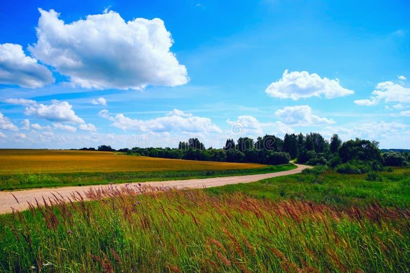 Windende weg op een gebied op een de zomerdag royalty-vrije stock afbeeldingen
