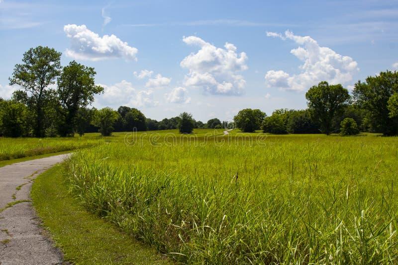 Windende wegkrommen door weide van gras en door groene bomen en omhoog over heuvel allen onder mooie blauwe hemel en pluizige wol stock foto