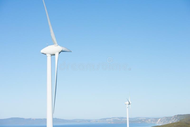 Windenergielandbouwbedrijf Albany Australië stock afbeeldingen