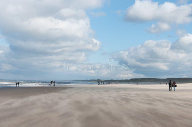 Winderig strand stock afbeelding