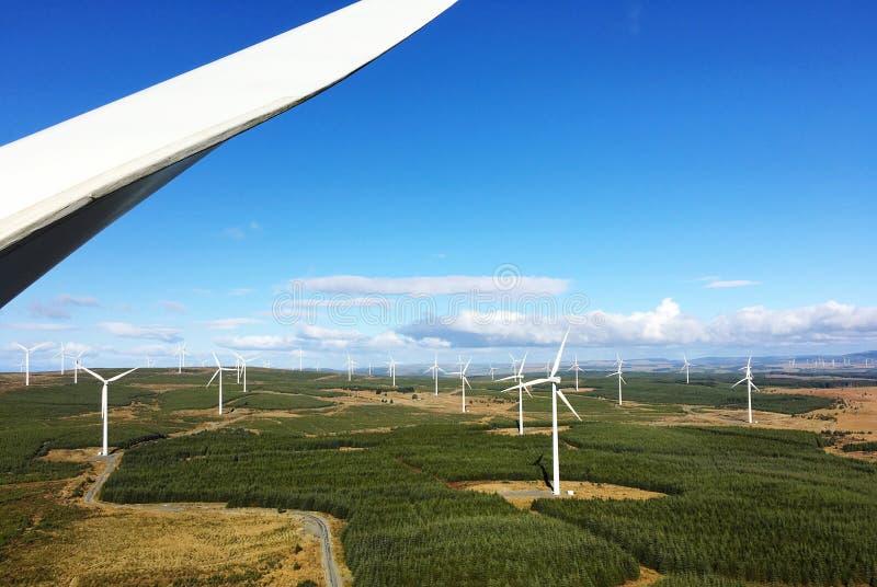 Windfarm стоковая фотография