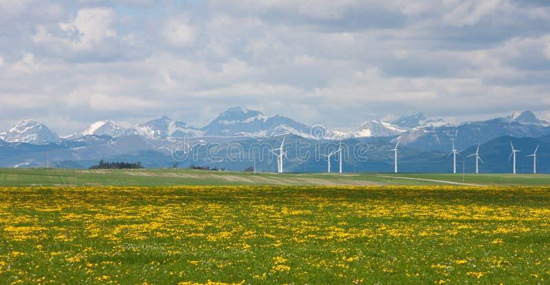 Windfarm all'insenatura di Pincher fotografie stock libere da diritti