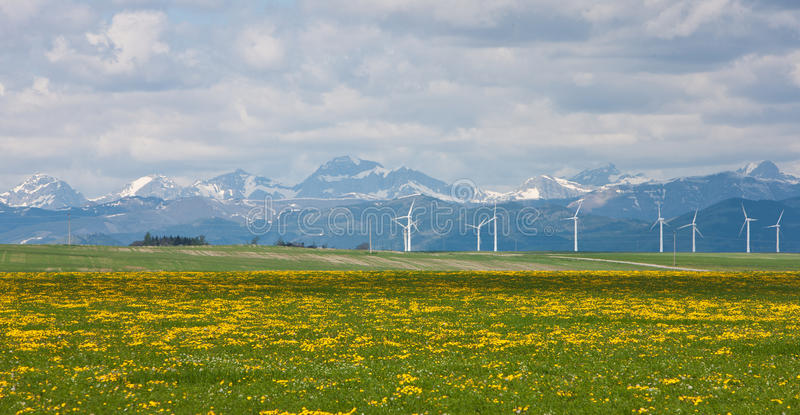 windfarm pincher заводи стоковые фотографии rf