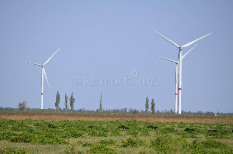 Windgeneratoren auf dem Sommerfeld lizenzfreies stockbild