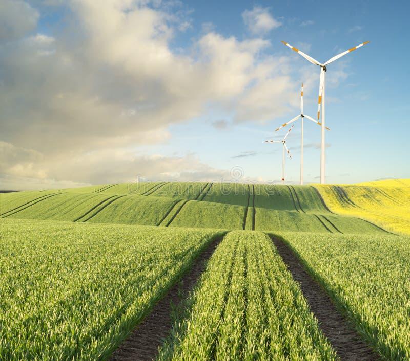 Windgeneratorturbinen stockbilder