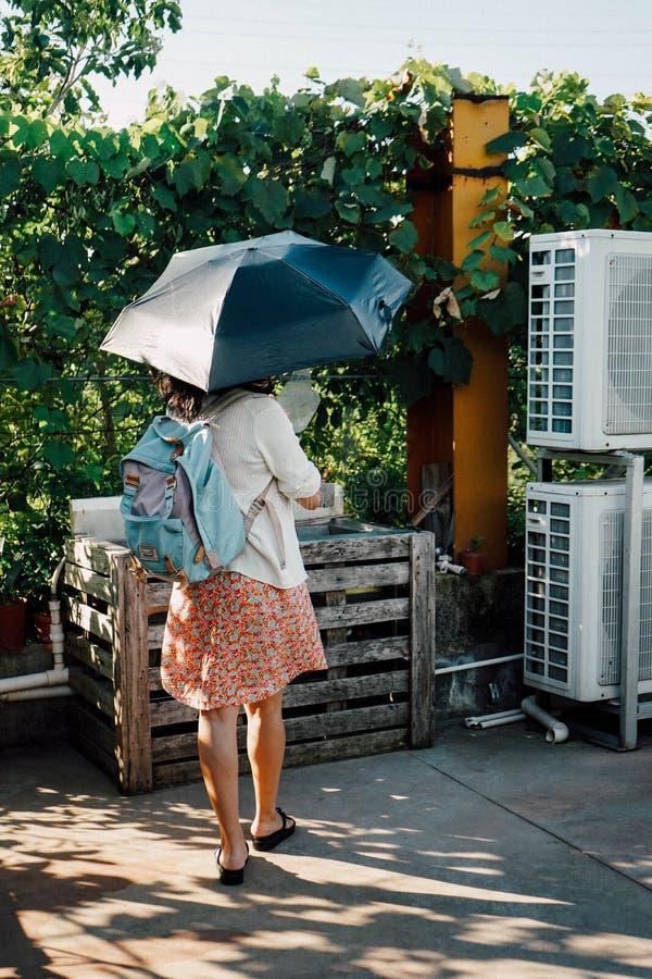 Windige Frau lizenzfreie stockbilder