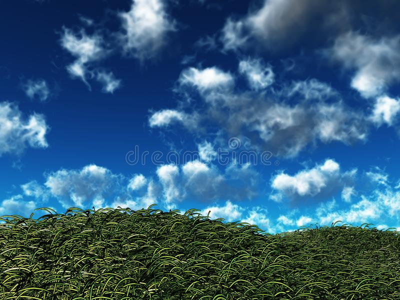 Windige Hügel lizenzfreie stockfotos