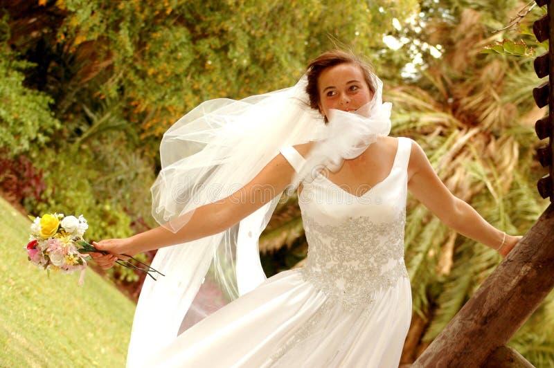 Windige Hochzeit lizenzfreie stockbilder