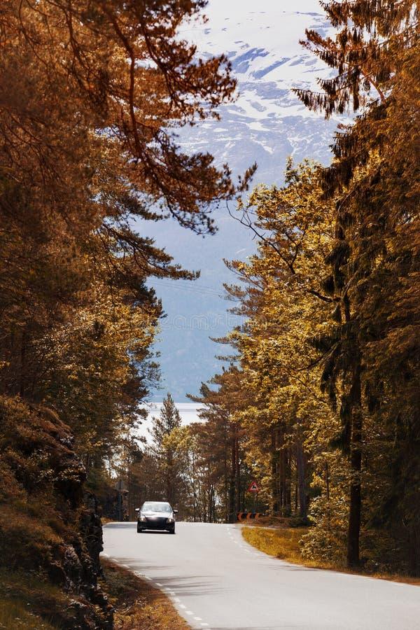 Windige Straße stockbilder