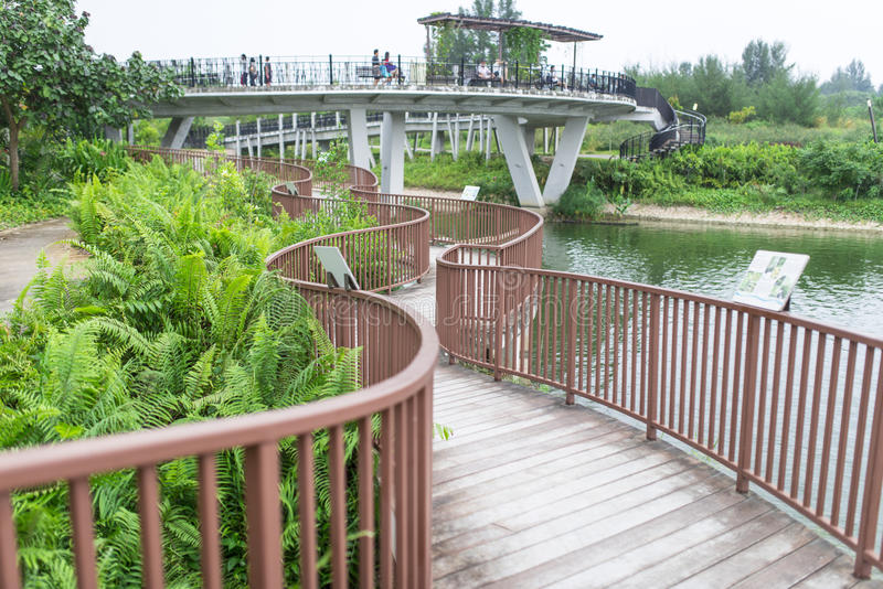 Winding Boardwalk. With sunrise bridge at Punggol waterway in Singapore stock photos