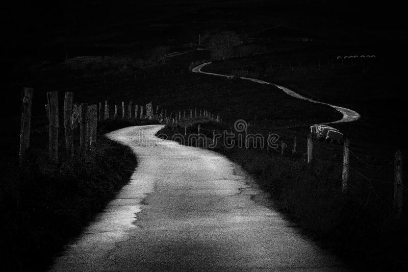 Winding country road in black and white. Noise added. Winding country road in black and white with some Noise added royalty free stock images