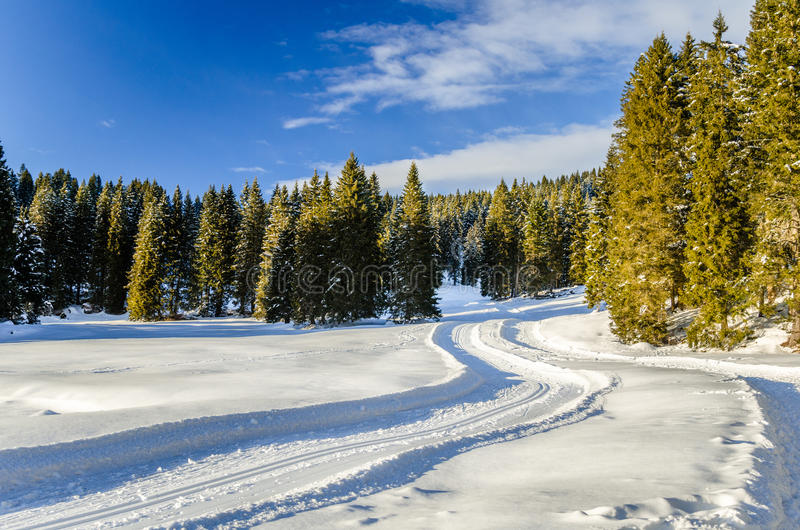 Winding Cross-country Skiing Track. On a Clear Winter Day stock photos