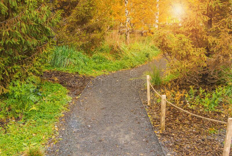 A winding dirt pedestrian path through the Park on an autumn day.  royalty free stock photography