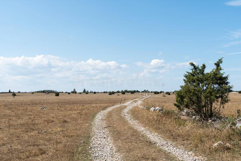 Winding dirt road in a dry grassland royalty free stock photography